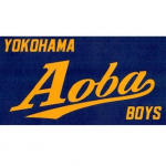 2021年度「横浜青葉ボーイズ」にチーム名変更